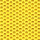 Жёлтый сота